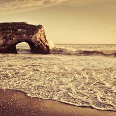 Amazing Sepia Beach Sunset