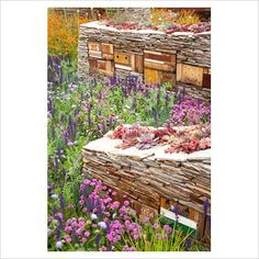 Dry stone wall with wildlife habitats at Chelsea Flower show 2011