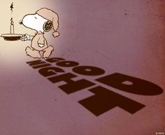 Good night via www.Facebook.com/Snoopy