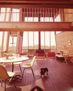 The Frank House by Andrew Geller (1958, Fire Island). It's pet name was 'The Cube' - a beach house fit for man and beast. From Beach Houses (2003) by Alastair Gordon, paperback edition coming soon from PAPress.