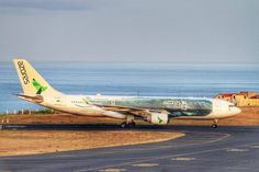 Azores Airlines in Ponta Delgada Airport Ponta Delgada, Azores, Islands, Aviation, Aircraft, Commercial, Travel, Trips, Airplane