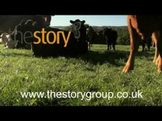 The Story Meat Boxes: How We Farm Our Beef
