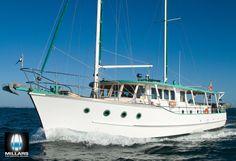 MV Amity Ocean Cleanup, Deck Boat, Cool Boats, Wooden Boats, Yachts, Sailing Ships, Vintage, Ships, Wood Boats