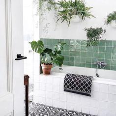 Een kijkje in onze groene 🌿 badkamer! A peek in our green 🍀 bathroom! Home Decor Kitchen, Interior, Natural Bathroom, Green Bathroom, Bathroom Styling, Interior Styling, Home Decor, Wall Planter, Bathroom Decor