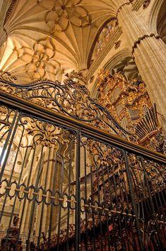 "jensawesomeworld: "" Salamanca Cathedral, Castile and León, Spain. """