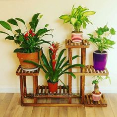 stand hanger on sale at reasonable prices, buy Wood 4 Tier Flower Pot Racks Home Garden Decor Etagere Plant Pot Display Shelf Planter Stand Flower Patio Deck Indoor Outdoor from mobile site on Aliexpress Now! Indoor Vegetable Gardening, Indoor Garden, Indoor Outdoor, Home And Garden, Plants Indoor, Organic Gardening, Indoor Plant Shelves, Garden Shelves, Jardin Decor