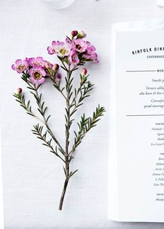 Flowers & menu at Kinfolk Magazine Copenhagen dinner. Styling Nathalie Schwer photographer Line Thit Klein