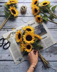 60 Ideas For Simple Aesthetic Wallpaper Love Simple Aesthetic, Aesthetic Grunge, Sunflower Wallpaper, Mellow Yellow, Aesthetic Wallpapers, Planting Flowers, Flower Arrangements, Beautiful Flowers, Bloom