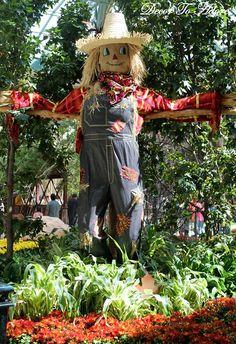A Garden of Autumnal Splendor.maybe a scarecrow by the wheelbarrow. Scarecrows For Garden, Fall Scarecrows, Make A Scarecrow, Scarecrow Ideas, Scarecrow Crafts, Garden Crafts, Fall Halloween, Halloween Stuff, Costumes