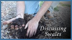 I'd like to invite you to take a little walk with me on the farm. During this walk I'll share my current system of permaculture swales. The swales have been ...