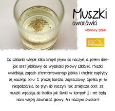 Sposób na muszki owocówki Homemade Mayonaise, Arduino, Detox Your Home, Kitchen Organisation, In Case Of Emergency, Diy Cleaners, Home Made Soap, Detox Drinks, Kitchen Hacks