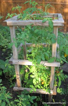 Not doing wire cages anymore, making some of these this summer. | protractedgarden