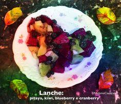 Lanche: pitaya, kiwi, blueberry e cranberry! Simples assim!