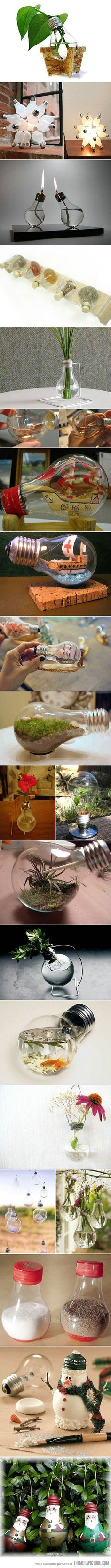 This is awesome.  I love how so many of them are with plants  Fun with light bulbs…