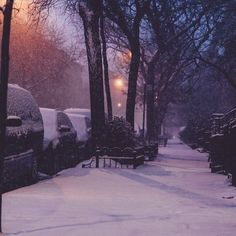 Purple and orange I Love Snow, Winter Love, Winter Night, Winter Snow, Winter Christmas, Winter Pictures, Cool Pictures, Night Aesthetic, Winter Scenery