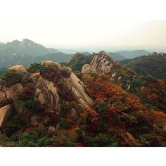 Syksyn värit  #dobongsan #korea kiitos @sanelmae #mondolöytö #hiking #mountains #southkorea #mondolehti