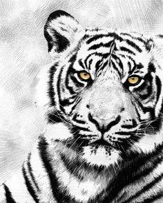 #Black&White #Print