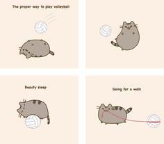 Pusheen Volleyball by charzydrak