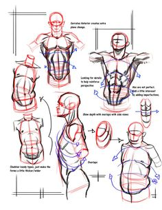 simple_form_breakdown_abs2_by_funkymonkey1945-d3h25nk_zpse8a0bc43.jpg (791×1024)