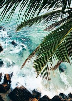 Free your Wild :: Escape to a Beach Paradise :: Tropical Island Adventures :: Soak in the Sun :: Palms + Ocean Air :: See more Untamed Island inspiration / Summer Inspiration The Beach, Summer Beach, Men Summer, Style Summer, Summer Days, Green Beach, Beach Babe, Tropical Vibes, Belle Photo