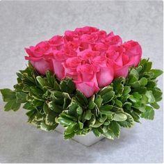 "Diseño ""pave"" de 16 rosas rosa fuerte y follage"