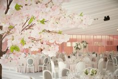 Luxury Marquee with hanging blossoms Ireland Wedding, Irish Wedding, Wedding Places, Wedding Venues, Marquee Wedding Inspiration, Cork Wedding, Real Weddings, Castle Weddings, Wedding Decorations
