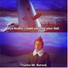 Mr. Narwhal! #byebuddy #elf #movie