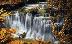 Lataa kuva syksy, vesiputous, river, syksyn lehdet, keltaisia lehtiä, Kroatia, Plitvice Lakes