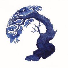 Today's Ink Test Tree: Diamine 150th Anniversary ~ 1864 Blue Black on @StillmanandBirn, Zeta paper  - @PiraU on Twitter