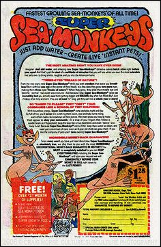 Sea Monkey ads were always in the back of comic books.   I sent away for some once...very disappointing.....
