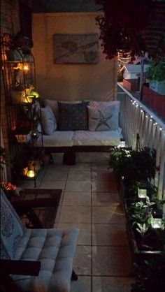 Evening in my balcony garden: