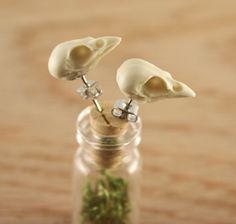 bird skull earrings  miniature sparrow skull studs  by skullery