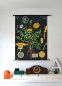 Covetable collectible: a vintage Jung Koch Quentell school pull-down chart. The wonderful dandelion. Vintage School, Up House, Botanical Prints, Decoration, Home And Living, Home Accessories, Artsy, Wall Decor, Design Inspiration