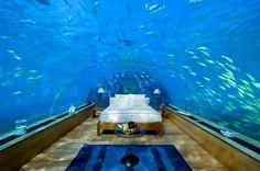 An amazing underwater hotel room at the 5* Conrad Maldives Rangali Island Resort.