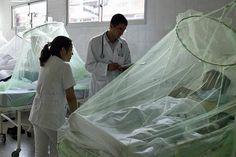 #No hay registro oficial de patologías raras en el Perú - Expreso (Perú): Expreso (Perú) No hay registro oficial de patologías raras en el…
