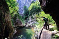 A soli 15 km da Trieste ci sono le Grotte di San Canziano, al confine tra Italia e Slovenia. Una meraviglia da visitare: il fiume Reika scorre per un tratto all'interno delle grotte ed ha formato, nei millenni, un enorme canyon roccioso all'interno di questo antro, profondo anche 120 metri! Scoprilo pernottando qui: http://www.agriturismo.com/dettaglioAgriturismo.asp?idLingua=1&id=2138 buona giornata!