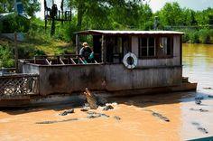 Alligator Park. Natchitoches, Louisiana.