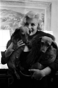 Marilyn Monroe holding a couple of cute dachshunds.