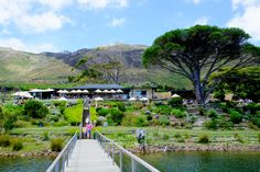 Décor, fashion and interiors with a focus on Cape Town Cape Town, South Africa, Bliss, Vineyard, Restaurants, Beautiful Places, Paradise, Places To Visit, African