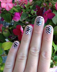 Cute zebra nails