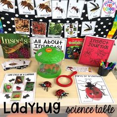 Bug Centers and Activities – Pocket of Preschool Ladybug science table! Bug themed activities and centers for preschool, and kindergarten (freebies too)! Perfect for spring, summer, or fall! Science Center Preschool, Creative Curriculum Preschool, Science Area, Science Experiments For Preschoolers, Science Table, Science Centers, Preschool Bug Theme, Preschool Prep, Chemistry Experiments