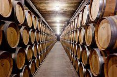 La sala de barricas de Castillo Perelada alberga unas 5.000 unidades. Beautiful Places, Most Beautiful, World, Wine Cellars, United States, Castles, The World, Peace