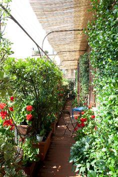modern balcony design ideas for amazing home decor ⋆ Main Dekor Network Balcony Plants, Balcony Garden, Indoor Plants, Terrace, Terrasse Design, Modern Balcony, Balcony Design, Outdoor Living, Outdoor Decor