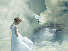 White dreams