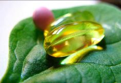 Vegan Supplements: The Two Vitamins You Need