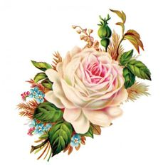 Use this gorgeous free vintage rose image transfer to create multiple home or wedding projects, surely to wow your guest!