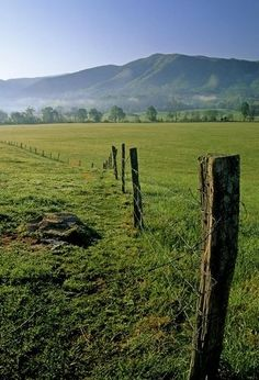 Cades Cove in the Smoky Mountains.    Call Pat Kirchhoefer, owner of cabins at 618-559-3915   ‪‬‬‬‬‬‬‬#vacay ‬‬‬‬‬‬‬‬‬‬#vacation #mountains ‬‬‬‬‬‬‬‬‬‬‬‬‬‬‬‬‬‬‬‬‬‬‬#greatsmokymountains #tennessee‬ #GSMNP #travel #nature‬‬‬‬‬‬‬ #hiking #wildlife #scenery #family #views ‬‬‬‬#familytime‬‬ #getaway #forest #trees‬‬ #smokymountains #cabin #vacationrental‬‬‬ #themountainsarecalling‬‬‬‬‬‬ ‬‬‬‬‬‬‬‬‬