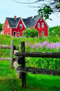 Country Living - picture perfect