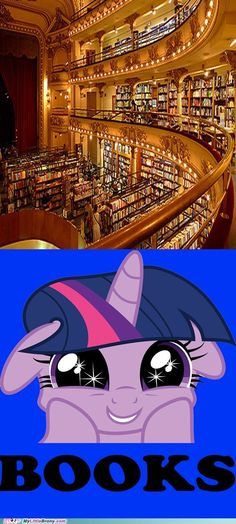 Why Be a Princess When You Can Have So Many Books?