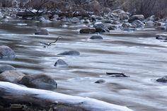 https://flic.kr/p/AYJFgB | Freezing Merced River | Merced River at Yosemite National Park. YOSEMITE NATIONAL PARK. California, United States. Copyright 2015 Kyller Costa Gorgônio.